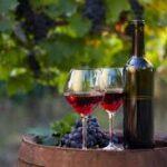 calici di vino con bottiglia su botte in una vigna