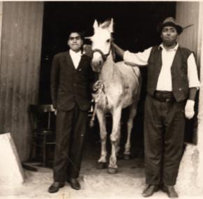 Foto in bianco e nero due uomini ai lati di un cavallo bianco